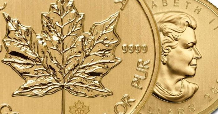 FAQ – Häufig gestellte Fragen zum Maple Leaf